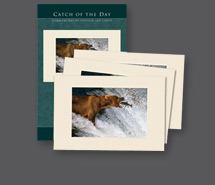 Commemorative Cards