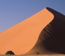 Desert | Canyon