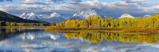 Autumn Splendor at Oxbow Bend | Open Edition Art