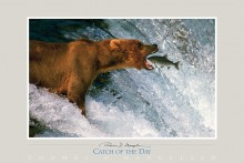 Catch of the Day | Fine Art Poster