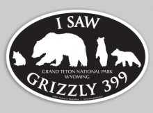 Vehicle Bumper Sticker Saw 399 - Black