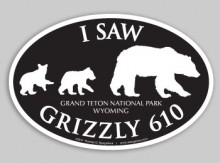 Vehicle Bumper Sticker Saw 610 - Black