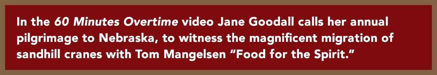 Jane Goodall talks about her annual pilgrimage to Nebraska
