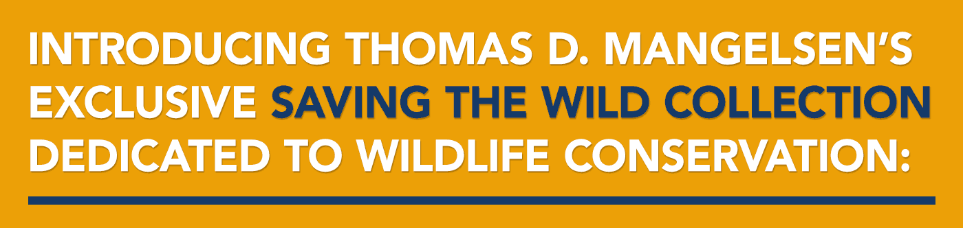 Introducing Thomas D. Mangelsen's exclusive Saving the Wild Collection