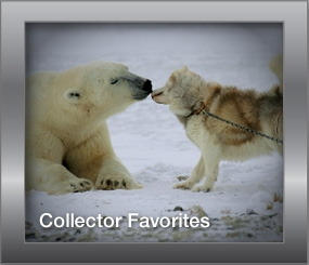 Collector Favorites