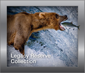 Legacy Reserve Collection