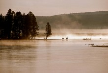 Morning Light - Yellowstone River