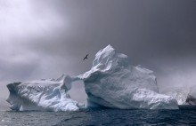 Antarctic Ice Patrol