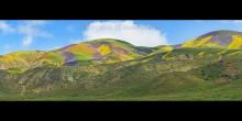 The Colors of the Carrizo
