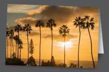 La Jolla Gold | Art Card Set
