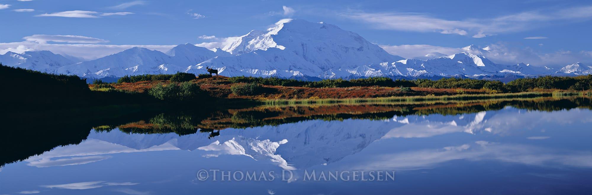Reflections of Denali