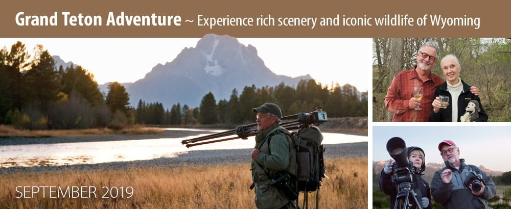 The Legacy Experience the Tetons 2019