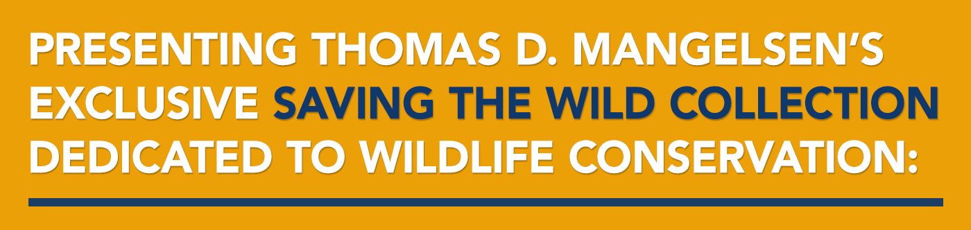 Presenting Thomas D. Mangelsen's exclusive Saving the Wild Collection